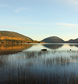 The Friends of Acadia Annual Fund allows us to do our best work on behalf of Acadia.  Give Now »