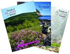 The best benefit of Friends of Acadia membership is the satisfaction of helping to preserve Acadia for current and future generations.   Join Now »