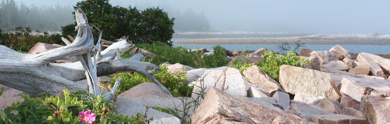 Granite blocks at Wonderland
