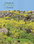 foa-spring-2013-cover-sml