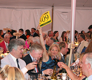 Bidding at the 2013 Friends of Acadia Benefit