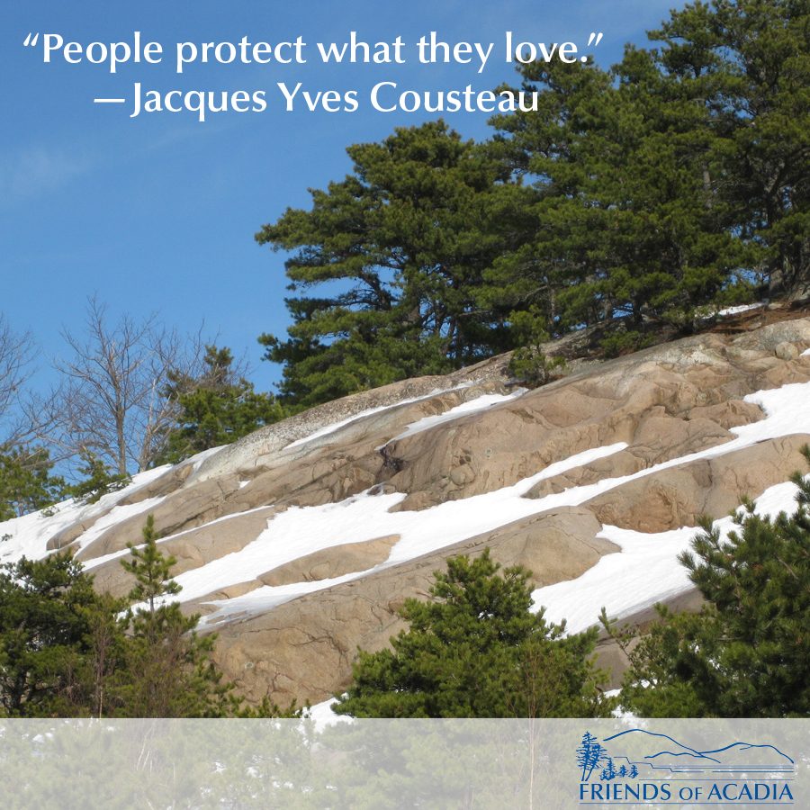 """People protect what they love."" —Jacques Yves Cousteau"