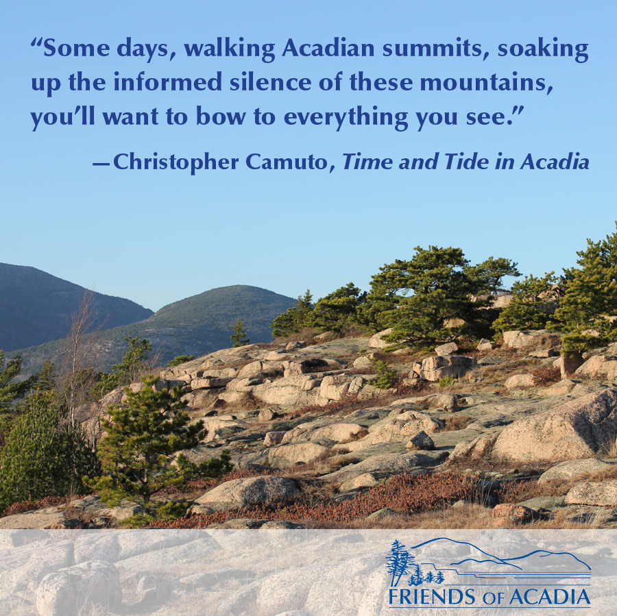 """Some days, walking Acadian summits, soaking up the informed silence of these mountains, you'll want to bow to everything you see.""  —Christopher Camuto, Time and Tide in Acadia"