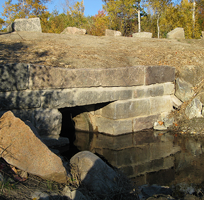 This undersized culvert, located where Cromwell Brook passes under the Park Loop Road, is the sole drainage for the entire Great Meadow wetland. When the Loop Road was constructed in the early decades of the park's existence, it significantly altered the natural hydrology of the area.