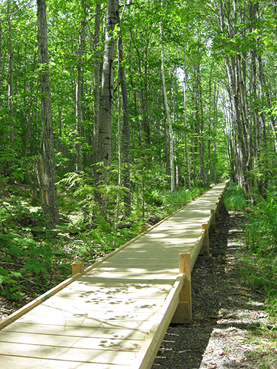 Acadia National Park trail crews and natural resource managers worked together on the 2009 restoration of the historic Jesup Path. The elevated boardwalk allows water to flow freely while keeping hikers high and dry during the wet spring season.