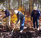 Stewardship Volunteers performing trail maintenance.