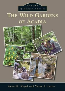 The Wild Gardens of Acadia cover