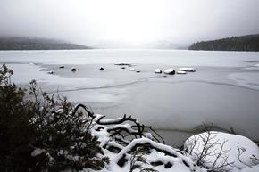 Acadia Winter Trails Association 2021 End of Season Update