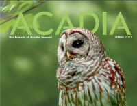 Spring issue of Acadia arrives soon
